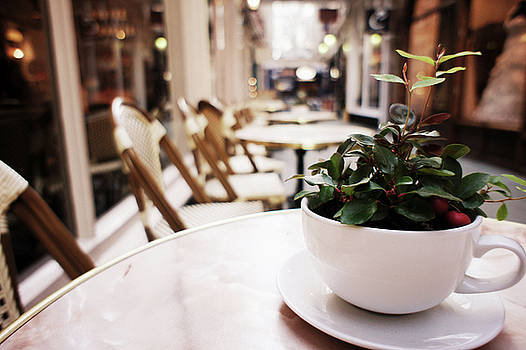Plant in a Cup in a Cafe by Trance Blackman