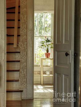 Plant in Window by Charles McKelroy