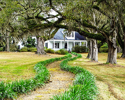 Terry Shoemaker - Plantation House