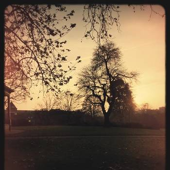 #plasticbullet #landscape #silhouette by Natalie Anne