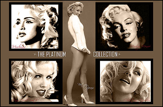 Platinum Collection by Anibal Diaz