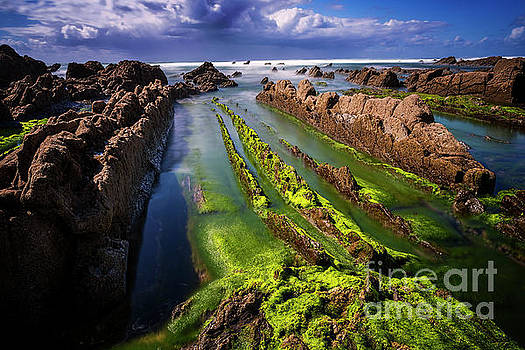 Playa Barrika 1 by Tony Priestley