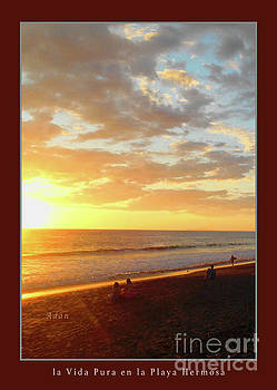 Felipe Adan Lerma - Playa Hermosa Puntarenas Costa Rica - Sunset A One Detail Two Vertical Poster Greeting Card