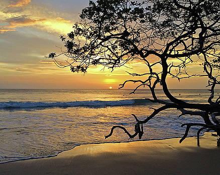 Playa Lola Sunset No. 2 by Richard Hinds