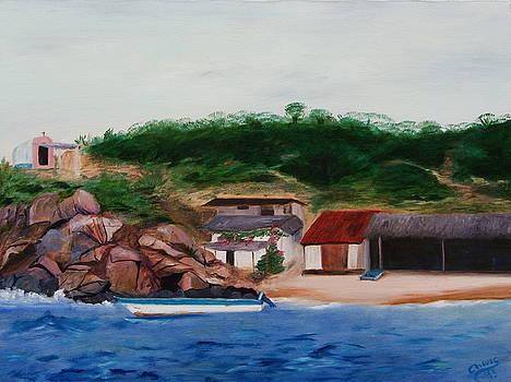 Playa San Agustin by Sylvia Riggs