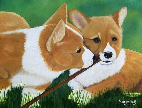 Playful Corgis by Debbie LaFrance