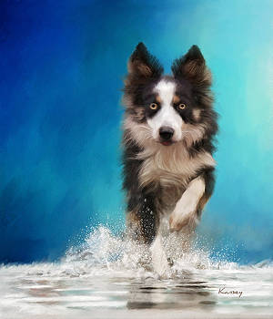 Playing in the water by Johanne Dauphinais