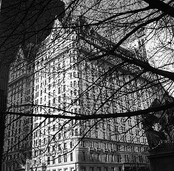 Plaza Hotel by Dave Beckerman