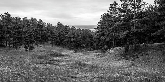 Pleasant Scene In Black And White by Michael Putthoff