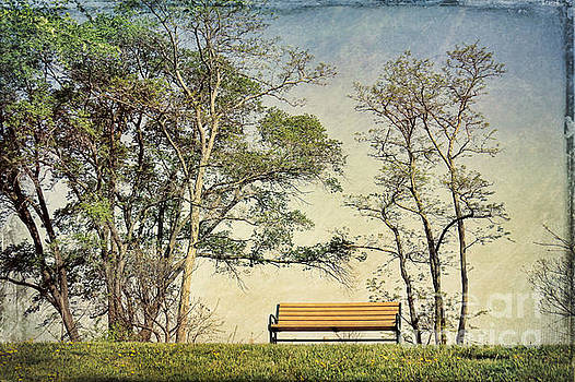 Please Have a Seat by Kerri Farley