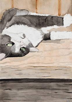 Please Rub My Belly by Marcella Morse
