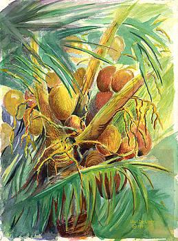 Plenty Coconuts by Wicki Van De Veer