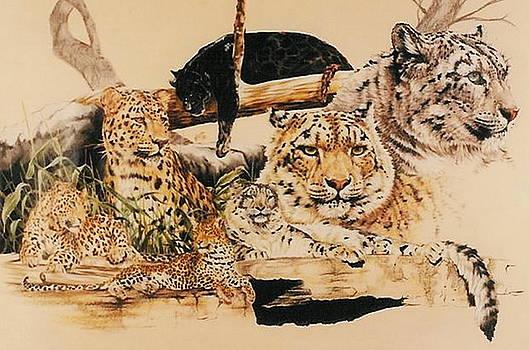 Barbara Keith - Plethora of Leopards