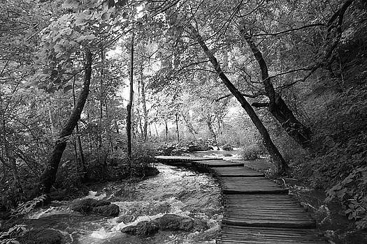 Plitvice in Black and White by Travel Pics