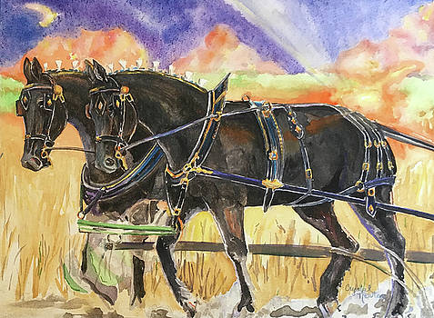 Plow Meet Turnout by Crystal Newton