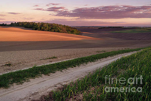 Plowed field at evening by Michael Lesiv