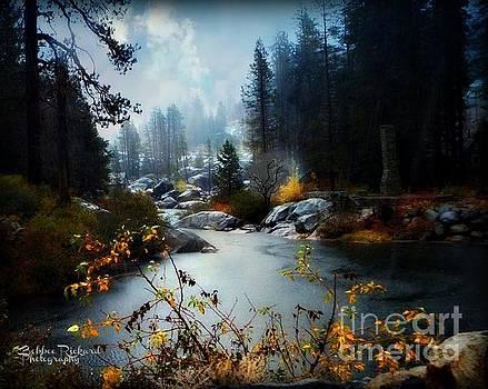Plumas River  by Bobbee Rickard