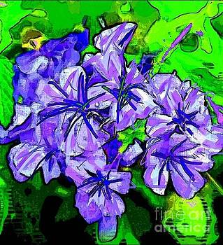 Plumbago1 by Amber Stubbs