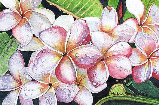 Plumeria Raindrops by Michele Ross