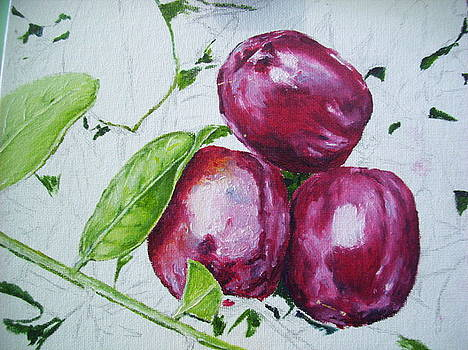 Plums Incomplete by Jharoam Welz