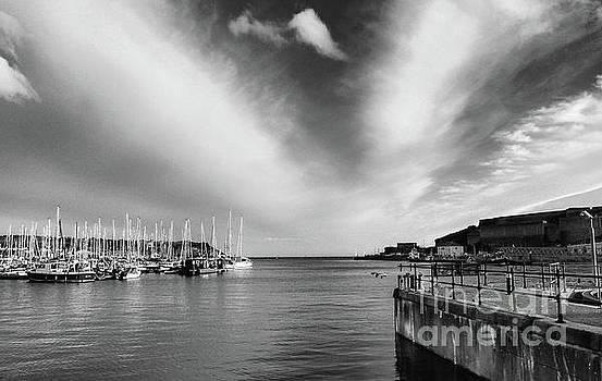 Plymouth Sound Marina by Lynn Bolt