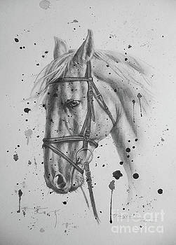 Pncil Drawing Horse #1743 by Hongtao Huang