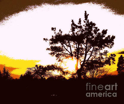 PNW Sunset by Eve Penman