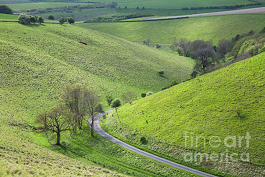 Pocklington Lane in Pasture Dale by Gavin Dronfield
