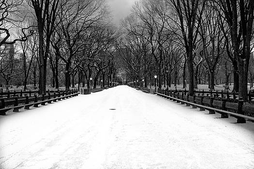 Poet's Walk In Snow by Mark Garbowski