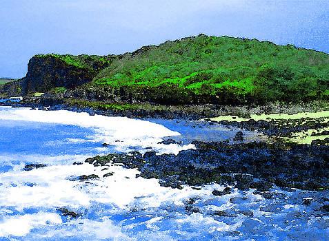 James Temple - Pohaku Mauliuli Beach