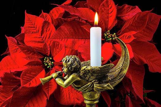 Poinsettia And Gold Angel by Garry Gay