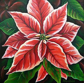 Poinsettia by Barbara Rockhold
