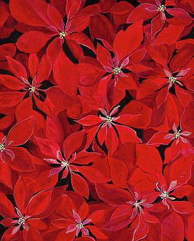 Poinsettia by Carla Dabney