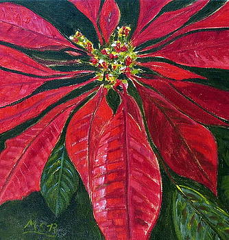 Poinsettia Closeup by Maria Soto Robbins