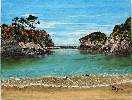 Point Lobos - China Cove Painting by Hema Sukumar