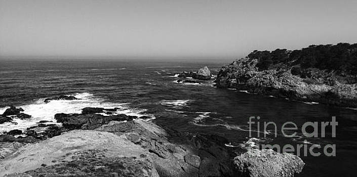 Point Lobos 3 by Chris Berry