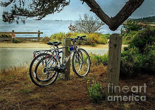 Point Lobos Bicycles by Craig J Satterlee