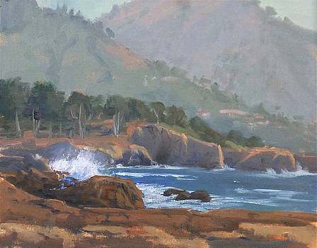 Point Lobos Coast by Sharon Weaver
