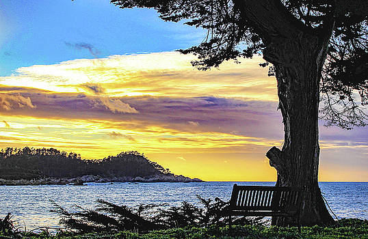 Point Lobos Sunset by Jeri Sawall
