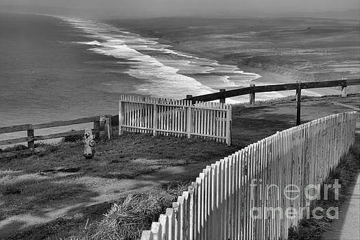 Adam Jewell - Point Reyes Fence Black And White