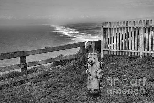 Adam Jewell - Point Reyes Fire Hydrant Black And White
