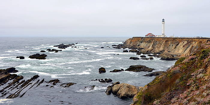 Point Reyes Panorama by Carla Parris