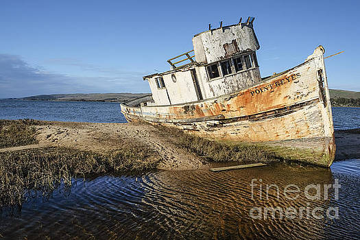 Point Reyes Shipwreck by Amy Fearn