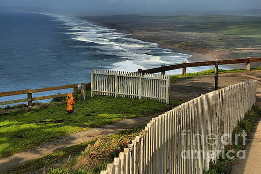 Adam Jewell - Point Reyes Wooden Fences