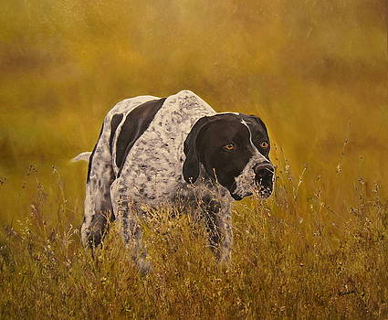 Pointer...to the point....... by Erna Goudbeek