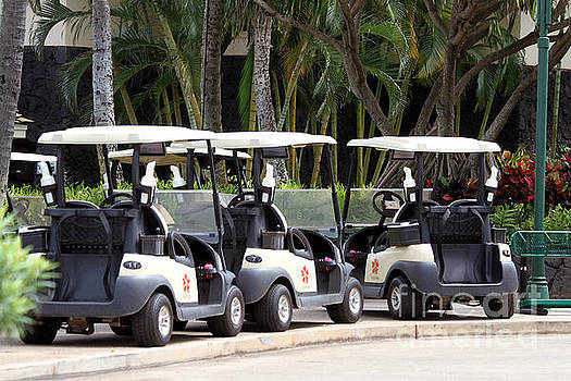 Poipu Bay Golf Course Carts by Catherine Sherman