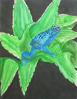 Poison Dart Frog by Ramon Bendita