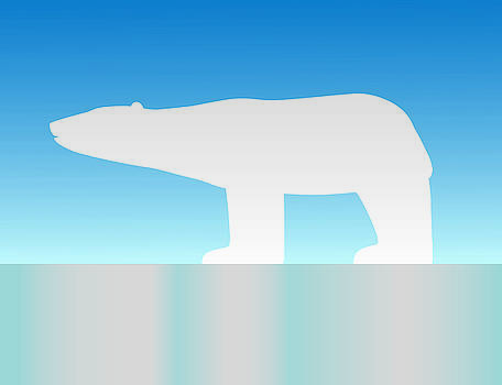 Polar Bear by David Strong