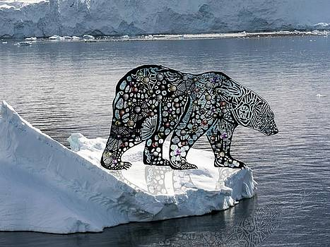 Polar bear on an ice flow by Darren Cannell