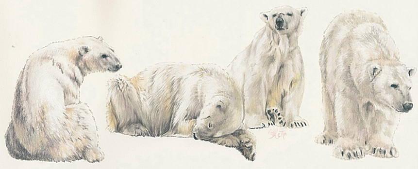 Barbara Keith - Polar Bear Wrap